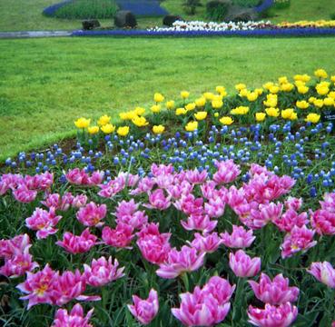 2006_04_13_kodak_133x_19