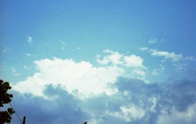2006_05_24_olympus_trip35_08_1