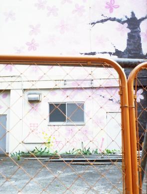 2006_06_24_fujica_half_06a