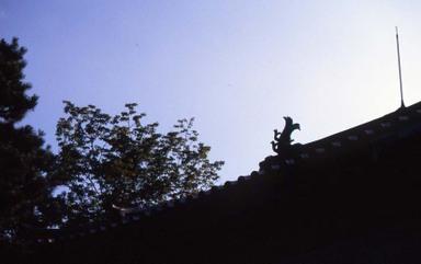2006_07_28_nikon_f80s_024_24001