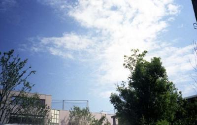 2006_08_18_ricoh_hicolor35_003_10001_1