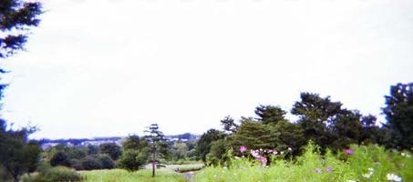 2006_09_20_holga_35mm_001_301