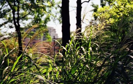 2006_09_20_nikon_f80s_052_09