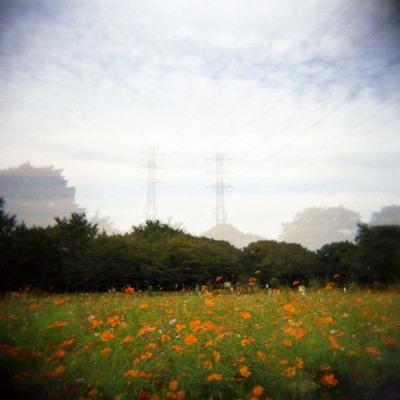 2006_10_12_holga_006_03