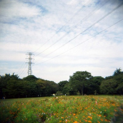 2006_10_12_holga_006_10