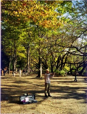 2006_11_09_rollei_a110_001_13