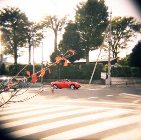 2006_11_18_holga_011_07