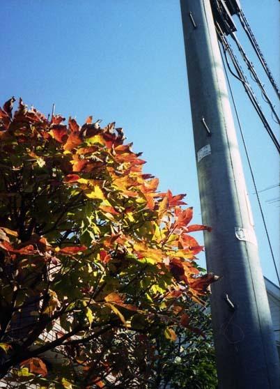 2006_12_04_pen_ee3_009_27