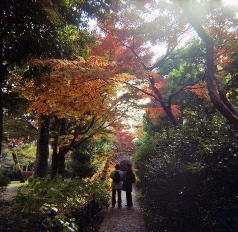 2006_12_05_fujipet_006_03_1