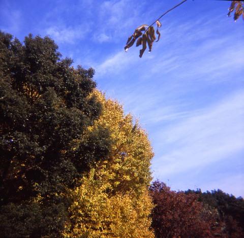 2006_12_06_fujipet_007_02