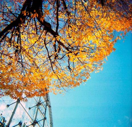 2006_12_10_fujipet_009_02