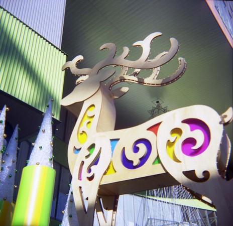 2006_12_10_fujipet_009_05