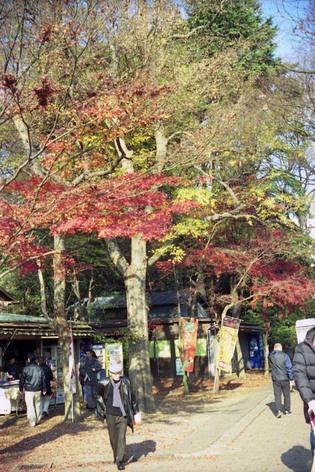 2006_12_23_minolta35_003_17