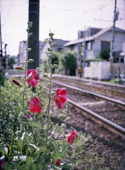 2007_06_17_penees_008_05a