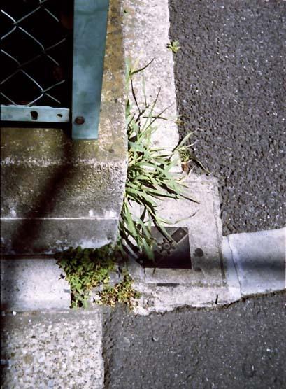 2007_06_23_penees_009_26a