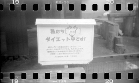 2007_09_02_holga_35mm_003_19