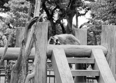 2007_09_02_samuraiz_011_06