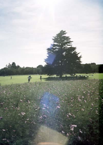2007_09_17_canon_demi_004_20
