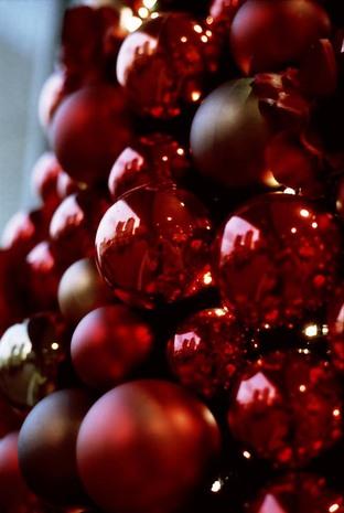 2007_11_14_olympus_m1_029_11