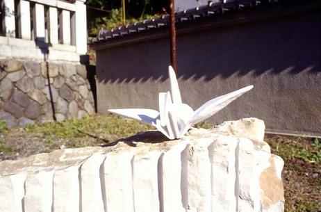 2007_11_19_olympus_om1_004_19