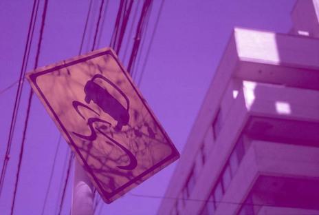 2007_12_14_nikon_f80s_154_07