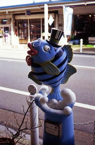 2007_01_04_nikon_f80s_082_31