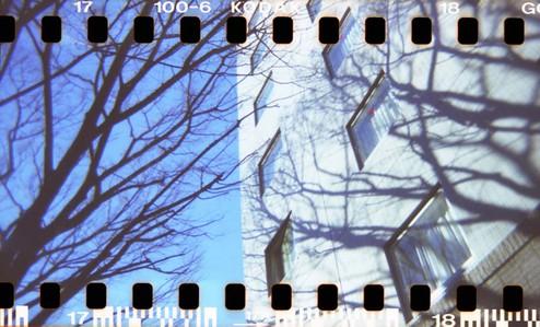 2007_01_10_holga_018_17a