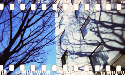 2007_01_10_holga_35mm_002_17a