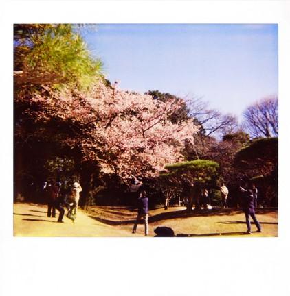 2007_02_15_polaroid_spectra_003_05