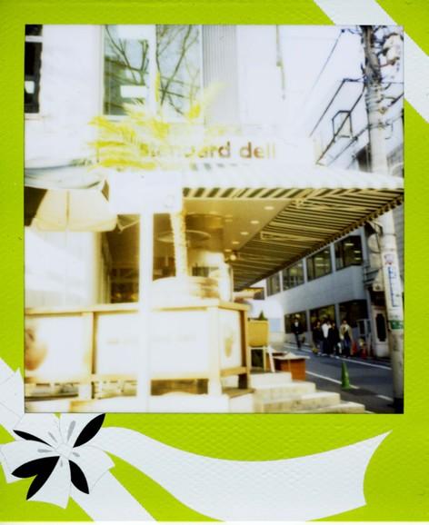 2007_03_13_polaroid_5000_001_09