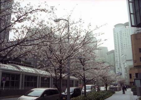 2007_04_02_samuraiz_009_09a