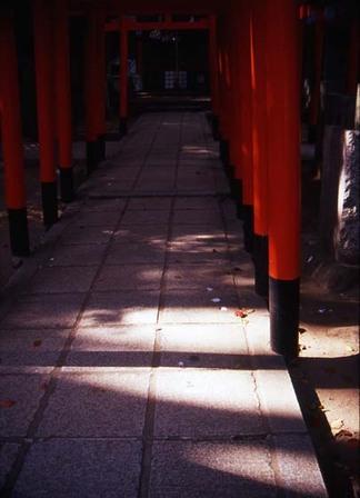 2007_04_06_samuraiz_010_18a