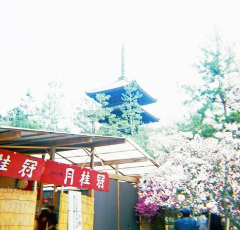 2007_04_15_fujipet_015_03