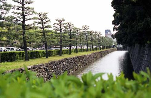 2007_04_15_nikon_f80s_096_17