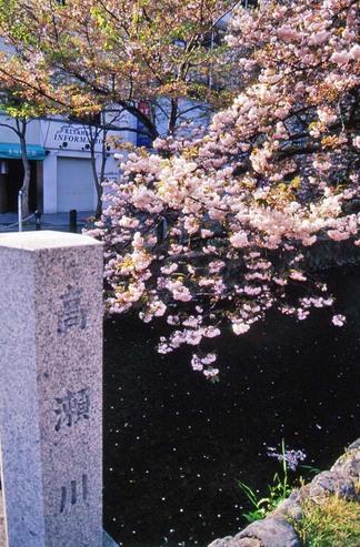 2007_04_15_nikon_f80s_099_20