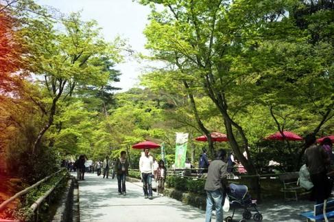 2007_04_15_ricoh_hicolor35_005_000a