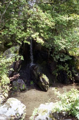 2007_04_15_ricoh_hicolor35_005_14a