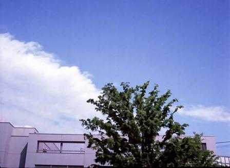 2007_05_15_penees_004_00