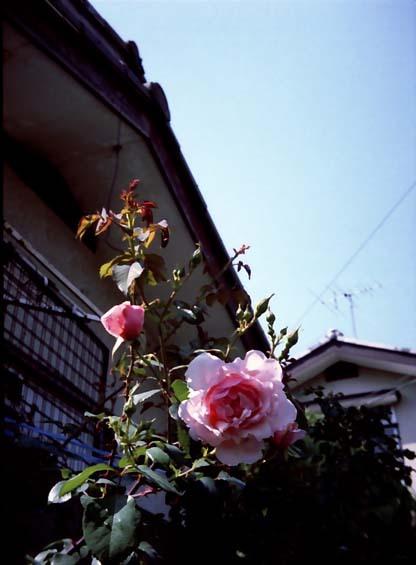 2007_05_15_penees_004_01a
