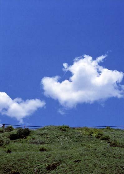 2007_05_19_penf_030_31a
