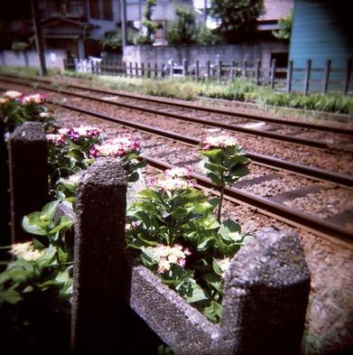 2007_05_26_holga_020_10
