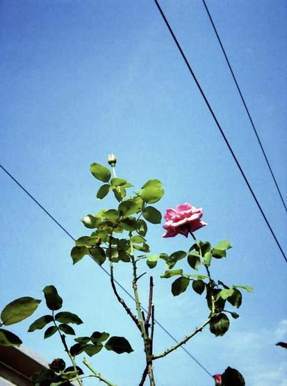 2007_06_17_penees_008_08