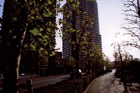 2007_12_26_nikon_f80s_157_18