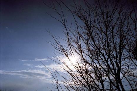 2008_01_04_nikon_f80s_164_01