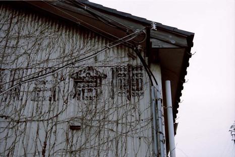 2008_01_05_nikon_f80s_165_12