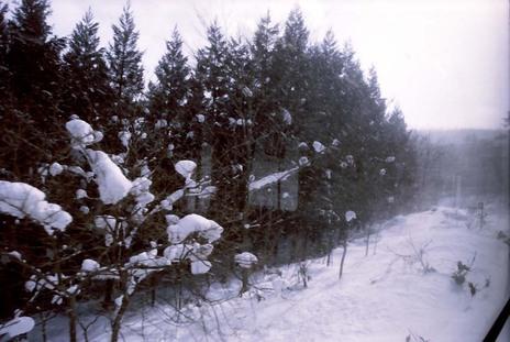 2008_01_15_nikon_f80s_166_29