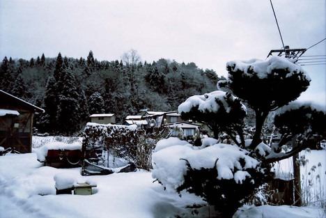 2008_01_16_nikon_f80s_167_11