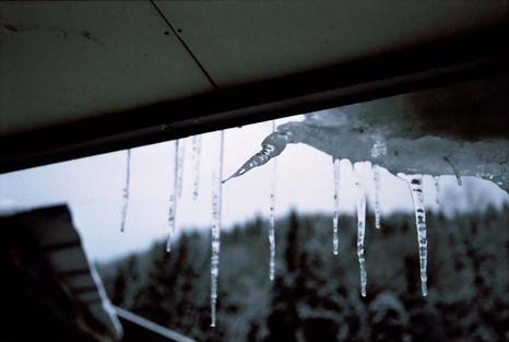 2008_01_16_nikon_f80s_167_13