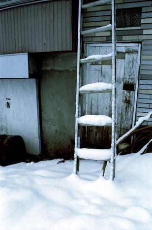 2008_01_16_nikon_f80s_167_23