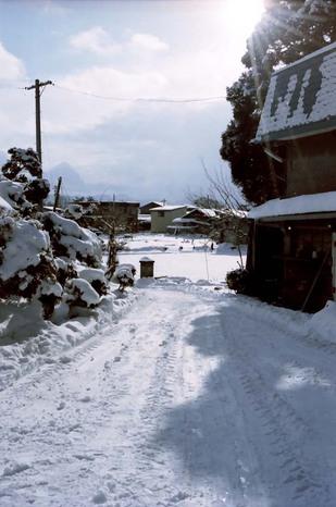 2008_01_16_nikon_f80s_168_20